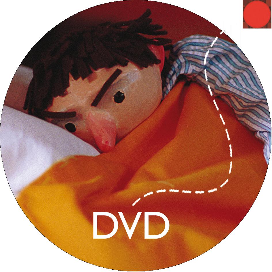 DVD El rey de la casa
